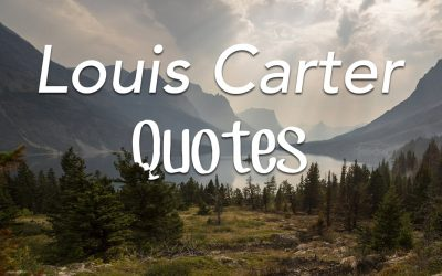 Quotes from Louis Carter